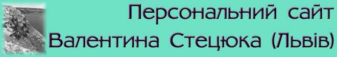 Логотип персонального сайта В.Стецюка
